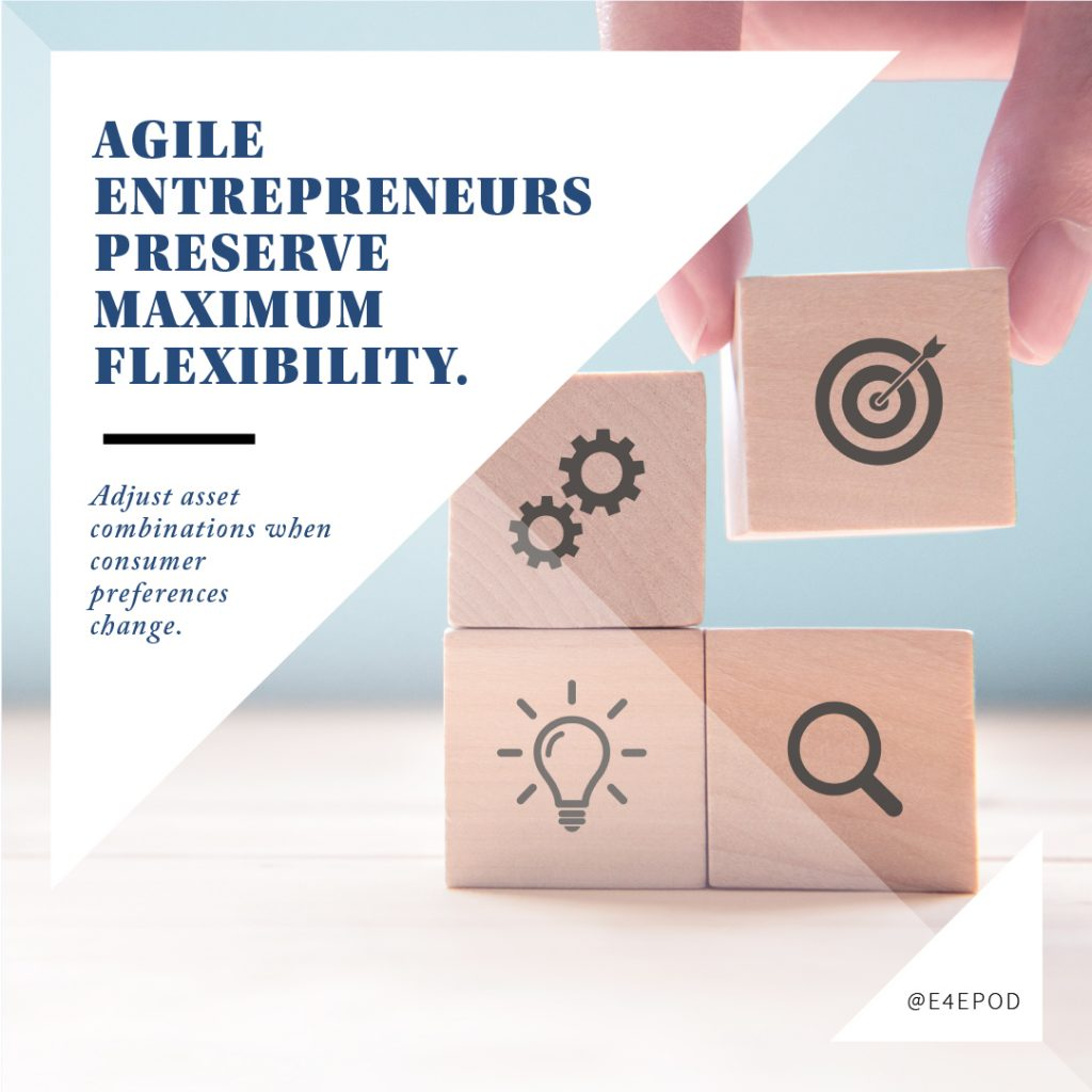 Agile Entrepreneurs Preserve Maximum Flexibility